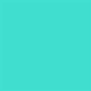Turquoise Party Products